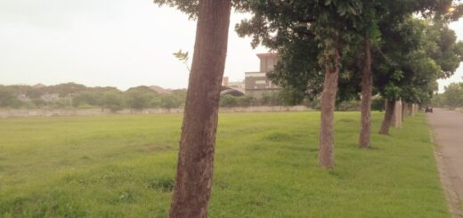 Dijual Kavling Komersial Pakuwon City Surabaya